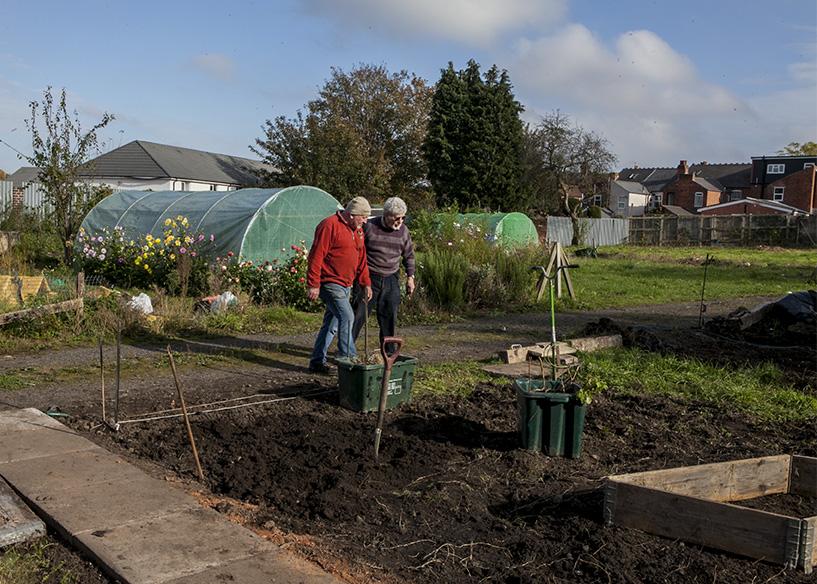 Steve and Len assessing progress on the New Shoots Gardening Club plot