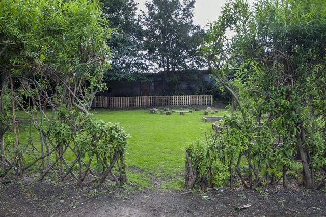 Willow hedge round Washwood Heath nursery plot, St Margarets Rd Allotment Site