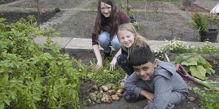 Diverse Garden Project